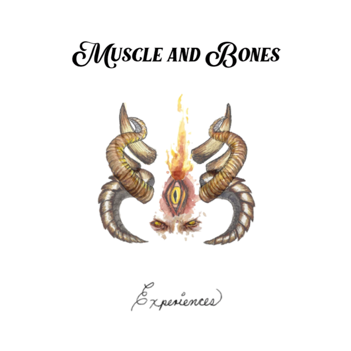 Muscle And Bones Experiences MPEI Records